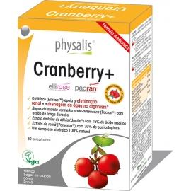 Cramberry +